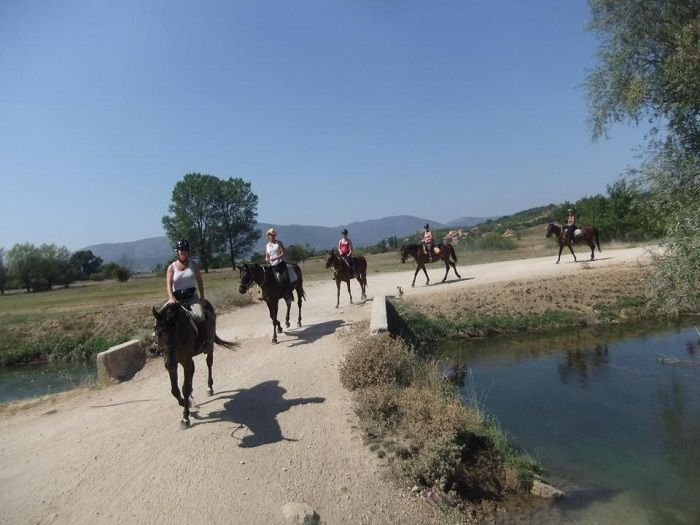 Ranch mustang near sinj horse riding heaven for all the for Where can i go horseback riding near me